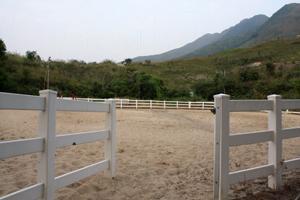 八鄉馬術俱樂部提供馬匹供園內的遊人試騎。