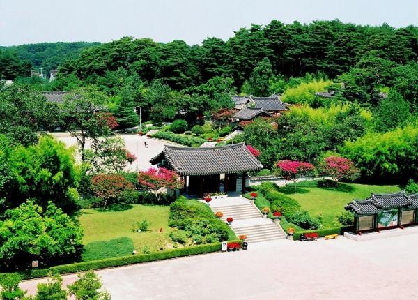 首爾出發!即日來回 4 大景點 體驗近郊美麗景色 14