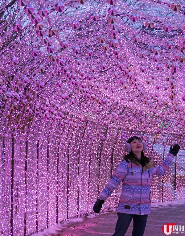 首爾出發!即日來回 4 大景點 體驗近郊美麗景色 21