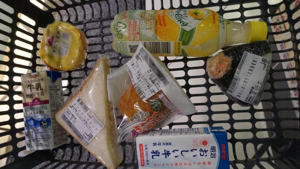 【日本關西行程】暑假遊關西 京阪5日4夜行程分享 3
