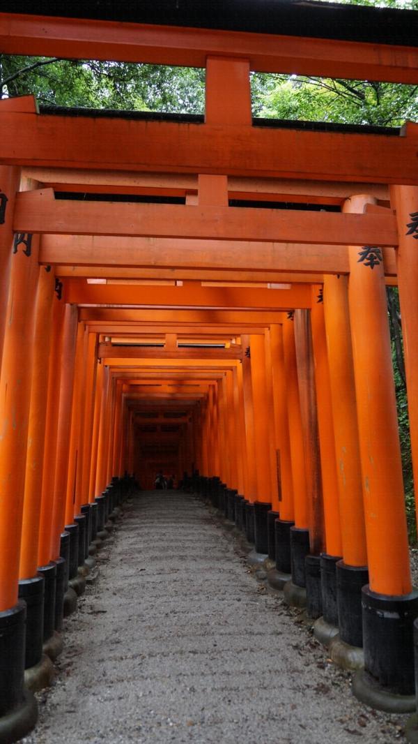 【日本關西行程】暑假遊關西 京阪5日4夜行程分享 28