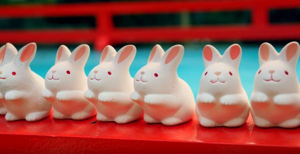 想拍拖就和兔神許願! 京都岡崎神社祈福攻略 5