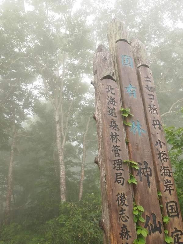 森林 局 北海道 管理