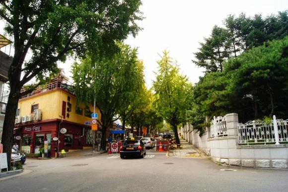 首爾 三清洞 北村韓屋 銀杏樹
