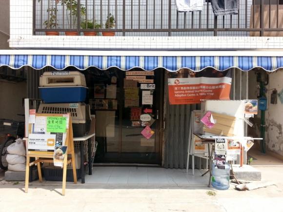 香港 南丫島 榕樹灣 動物保護組織 義賣店