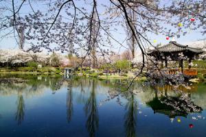 4日慶尚北道之旅