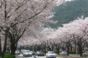 5天慶州麗水釜山遊