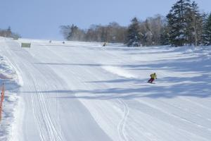 北海道滑雪溫泉冬日遊