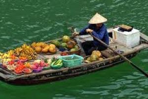 4日越南搵食之旅