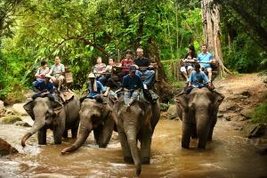 清邁三日兩夜遊古城騎大象