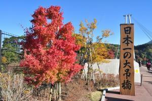 九州 5 日自駕遊日程