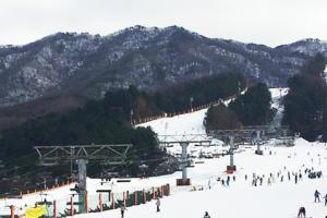 首爾學滑雪攻略+特色cafe之旅