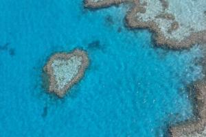 《澳洲聖靈群島》3天2夜,上天下海連住宿,港幣$2500搞掂