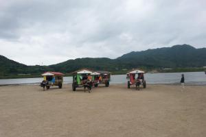 沖繩八重山群島之星野傳說