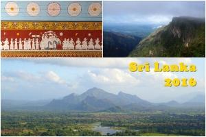 斯里蘭卡上山下海7天遊