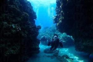 去沖繩就要去青洞體驗潛水!(有中文講解潛水冇難度!)