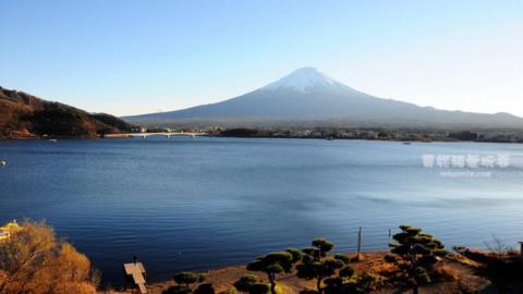 東京近郊6日5夜賞紅葉行程 由新宿出發去河口湖睇富士山!