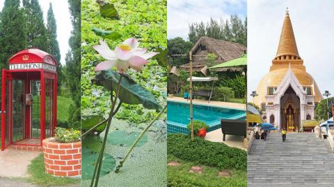 泰國曼谷近郊4日3夜慢活之旅 做Spa/睇螢火蟲/賞荷花/摘水果