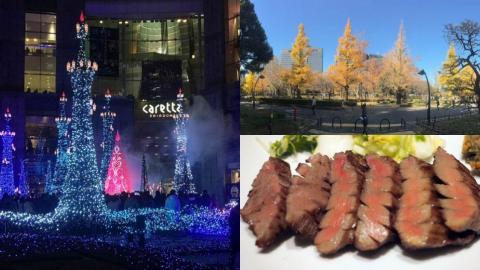 東京7日6夜行程 睇銀杏黃葉、聖誕燈飾、食勻東京美食
